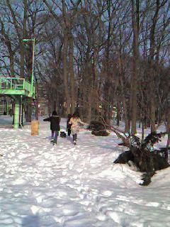 080318雪の公園を走る.jpg