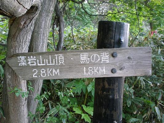 2010.05.29藻岩山登山 001.jpg