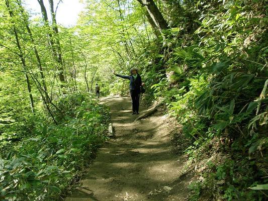2010.05.29藻岩山登山 004.jpg