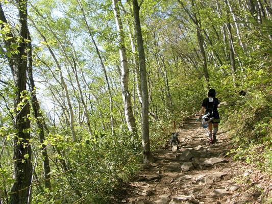 2010.05.29藻岩山登山 236.jpg