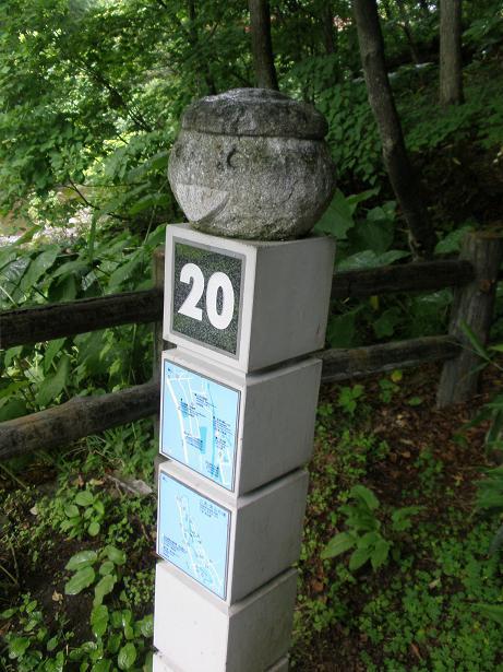 2010.07.04 定山渓朝日岳登山 012.13.14.jpg