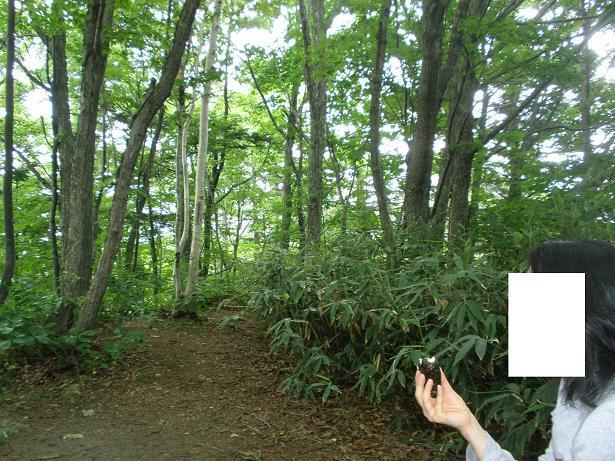 2010.07.04 定山渓朝日岳登山 030~33.jpg