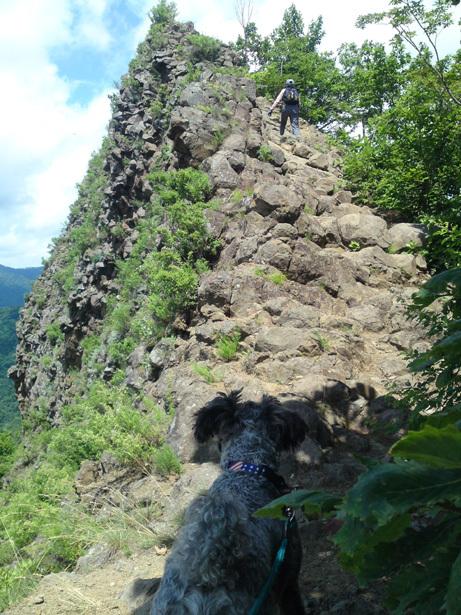 岩の階段 10.jpg