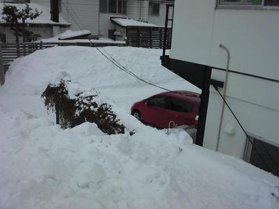 帰って来ました凄い雪.jpg