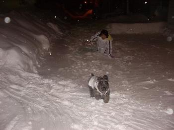 雪かき 021.jpg