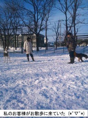 1 ひのまる公園散歩.jpg