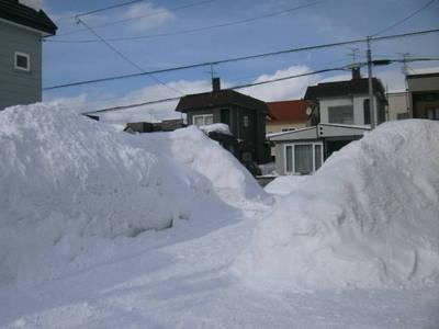 2雪.JPG