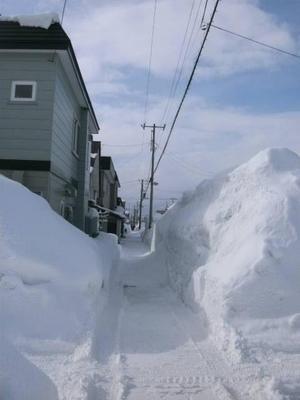 1雪.JPG