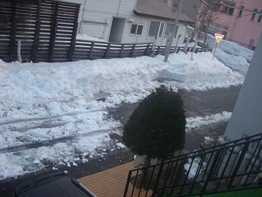 雪投げ007.jpg