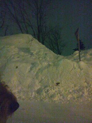 16 標識より高い雪山.jpg