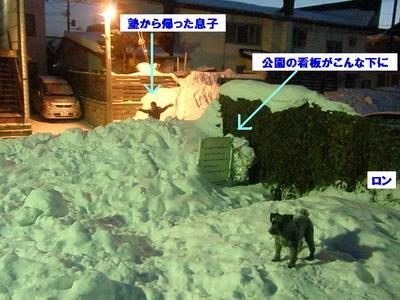 29 公園の雪.jpg